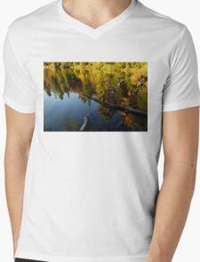 Mesmerizing Fall Reflections Mens V-Neck T-Shirt