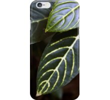 FLORAL PHASE #10 iPhone Case/Skin