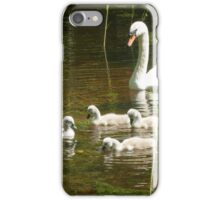 Mother swan and her little ones iPhone Case/Skin