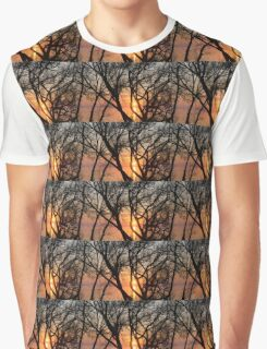 Sunrise Through the Chaos of Tree Branches Graphic T-Shirt