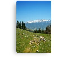Spring mount 3 Canvas Print