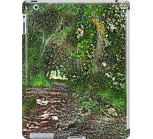 Walnut Creek Park iPad Case/Skin