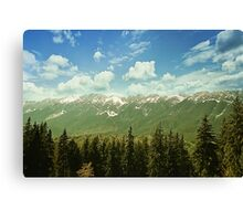 Spring mount 5 Canvas Print