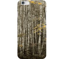 Aspen tree dropping yellow leaves in a Minnesota fall iPhone Case/Skin