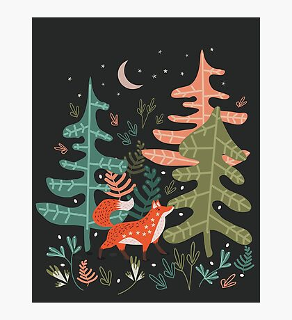 Evergreen Fox Tale Photographic Print