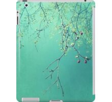 A new Chapter iPad Case/Skin