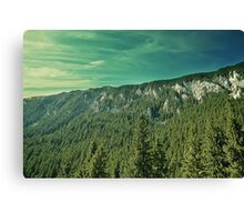 Spring mount 7 Canvas Print