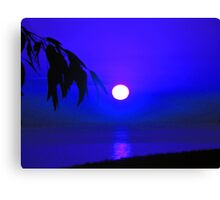 Dawn in the South fifth series Canvas Print