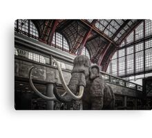 Angry Traveller Canvas Print