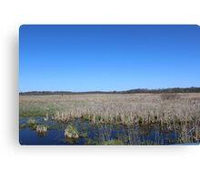 Wetlands in Edwardsburg Michigan Canvas Print