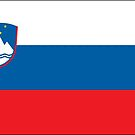 Slovenia National Flag Stickers by Mark Podger