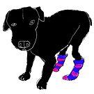Millie's socks by Matt Mawson