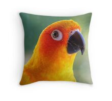 I Might Be Up To Mischief! - Sun Conure NZ Throw Pillow