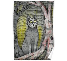 cat in the woods Poster