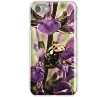Ladybug and Lavender Gardenscape iPhone Case/Skin