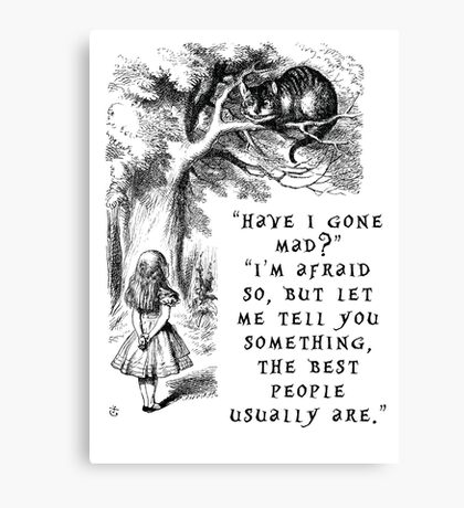 Have I gone mad? Canvas Print