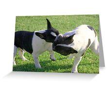 Lulu & Mickey Greeting Card