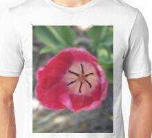 CO530 Unisex T-Shirt