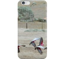 Galah's 'Take Off' over dry paddocks. Native Parrots, Mt. Pleasant. iPhone Case/Skin