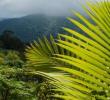 Tropical Rainforest - Jungle Green and Rain Clouds Sticker