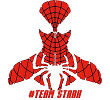 PLEASE SUPPORT TEAM STARK - SPIDER MAN Photographic Print