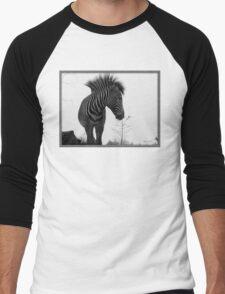 Zebra Portrait Men's Baseball ¾ T-Shirt