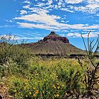 The American Southwest by Lanis Rossi