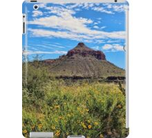 The American Southwest iPad Case/Skin