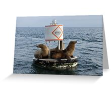 What is the Danger? Greeting Card