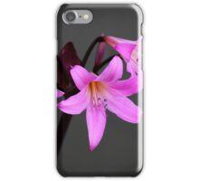 Naked Ladies iPhone Case/Skin