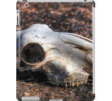 Sheep skull iPad Case/Skin