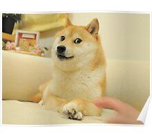 doge poster Poster