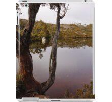 Wombat Tarn iPad Case/Skin