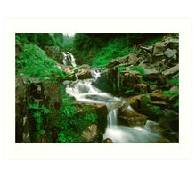 Washington Stream 1008-10 Art Print