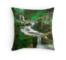 Washington Stream 1008-10 Throw Pillow
