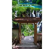 Pathway to Paradise Photographic Print
