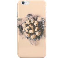 quail eggs nest iPhone Case/Skin