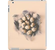quail eggs nest iPad Case/Skin
