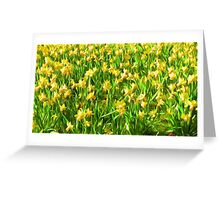 Daffodil Field ( Painting ) Greeting Card