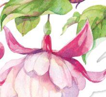 Pink Fuchsia Sticker