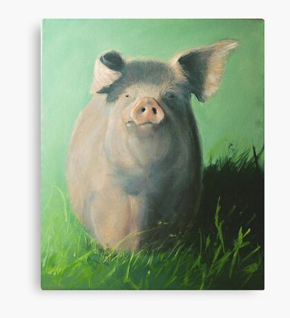 Pig in the grass Canvas Print