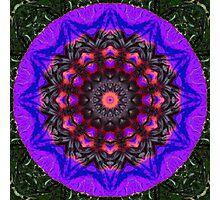Surreal Blossoms, Flower Mandala Photographic Print