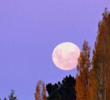 Autumn Moon - Southland New Zealand Sticker