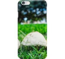 Northbridge Mushrooms iPhone Case/Skin
