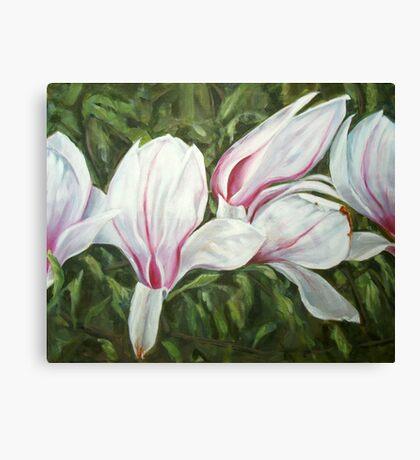 Magnolia III Canvas Print