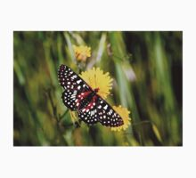 A Red Dotted Checkerspot Kids Tee
