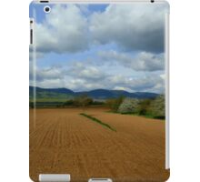 Rural scenery iPad Case/Skin