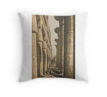 Jones, Owen, and Jules Goury VIEWS ON THE NILE, FROM CAIRO TO THE SECOND CATARACT. Throw Pillow