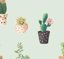 Cactus Pattern Sticker