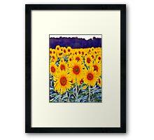 Fields of Sunflowers Framed Print